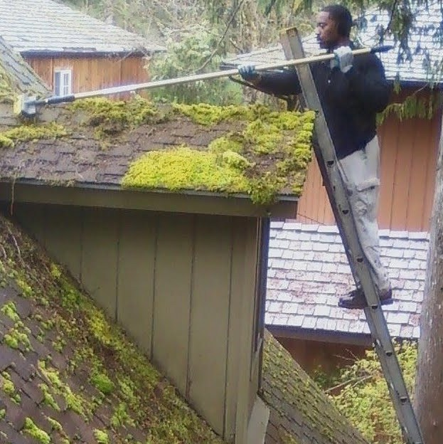 brushing moss from roof.jpg