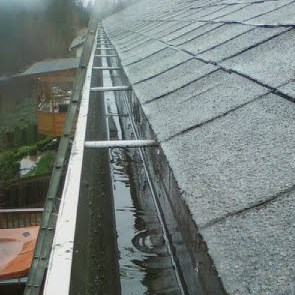 gutter cleaning.jpg