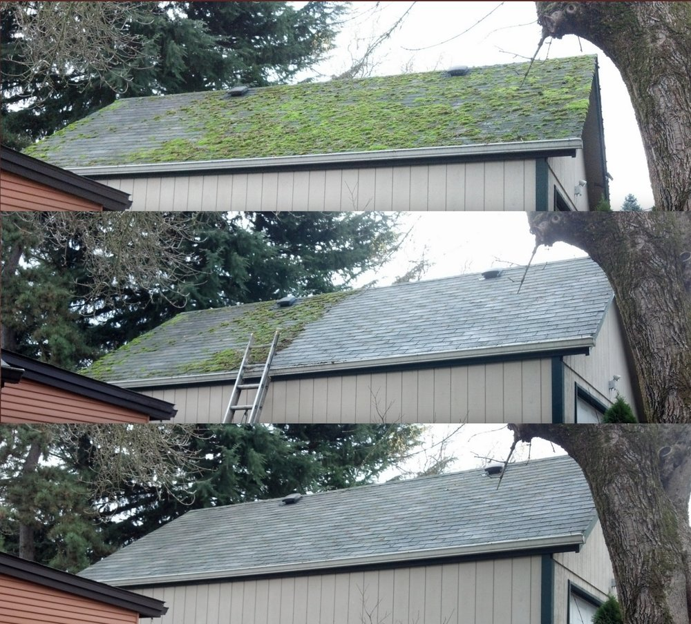 Beautiful Roof Cleaning And Organic Treatment In Portland
