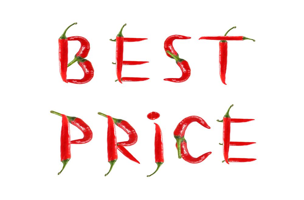 Professionelle Webseiten zu fairen Preisen.jpg
