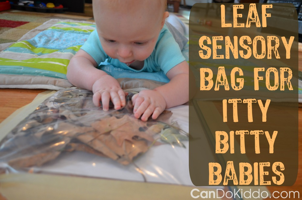 leaf sensory bag newborn play activities ideas