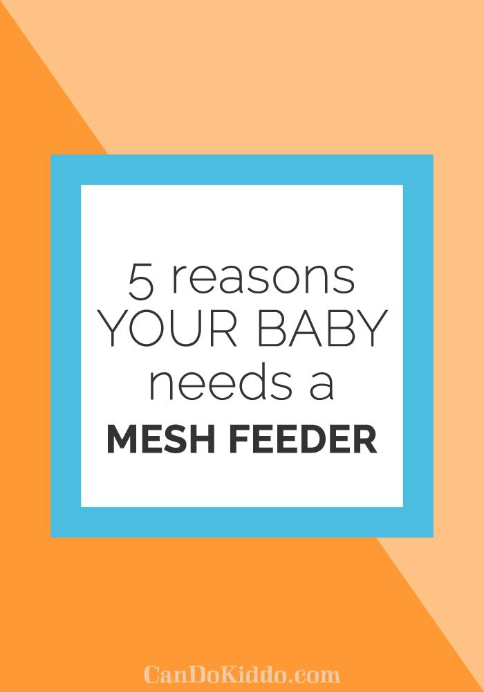 5-Reasons-Mesh-Feeder.png