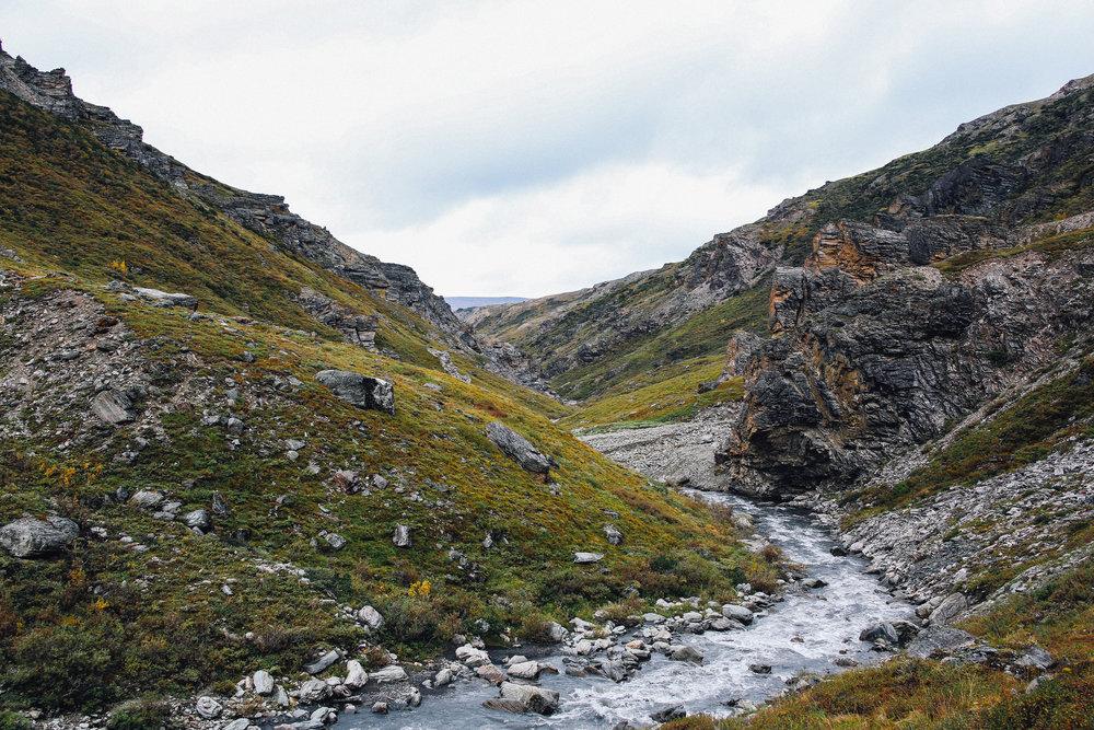 Denali_Savage River.jpg
