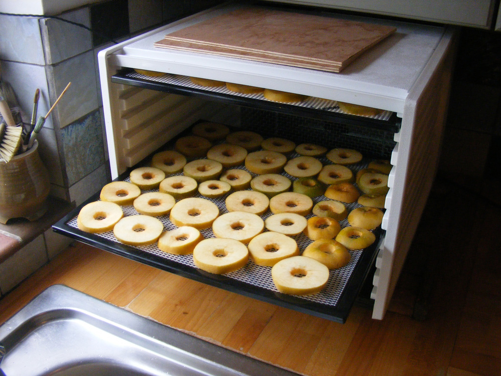 Apples in the drier.jpg
