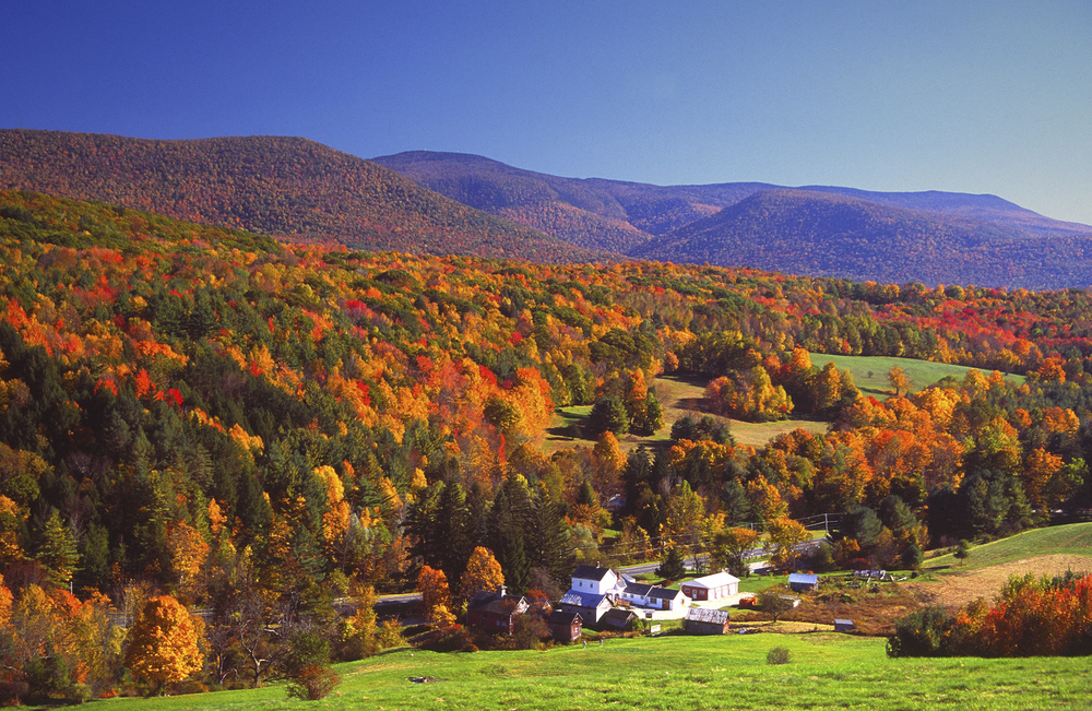 mountain valley fall foliage.jpg
