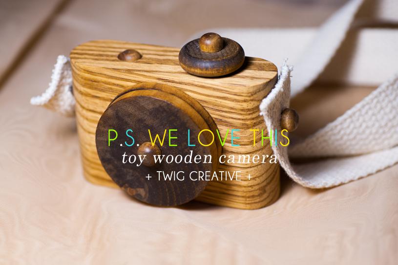 Twig Camera, Wooden Camera