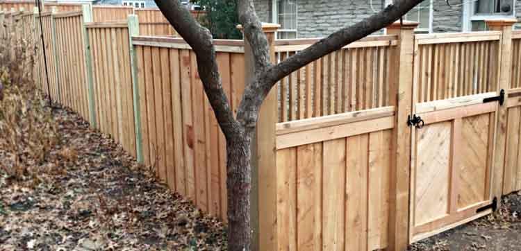 Custom+Made+Wood+Fence.jpg
