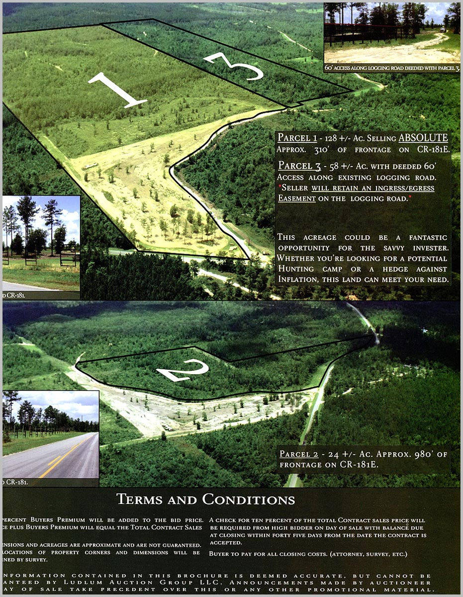 Walton County, FL Auction aerial photo and parcel layout