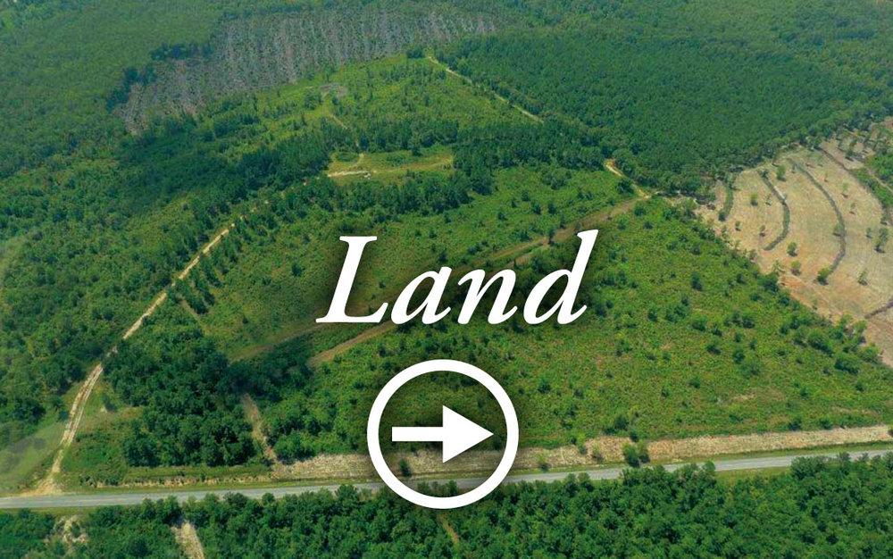 Land Auctions