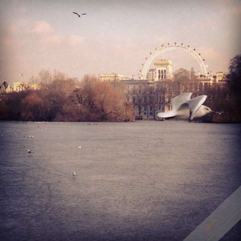 Instagram-iphone4S-Landscape-England-London-gavinconlan-Essex_Photographer-www.gavinconlan.com-London_Portraits-UK_Photographer-London_Photographer-Lifestyle.-.jpg