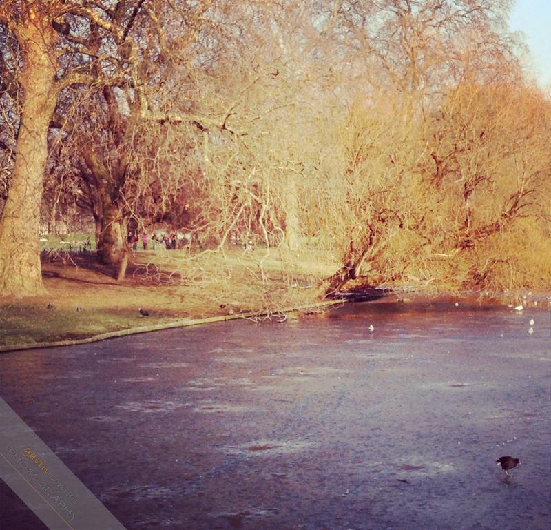 Instagram-iphone4S-Landscape-England-London-gavinconlan-Essex_Photographer-www.gavinconlan.com-London_Portraits-UK_Photographer-London_Photographer-Lifestyle.-6.jpg