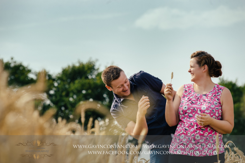 couple playing and laughing in a corn field in Essex.  Essex engagement photography by  gavin conlan photography Ltd