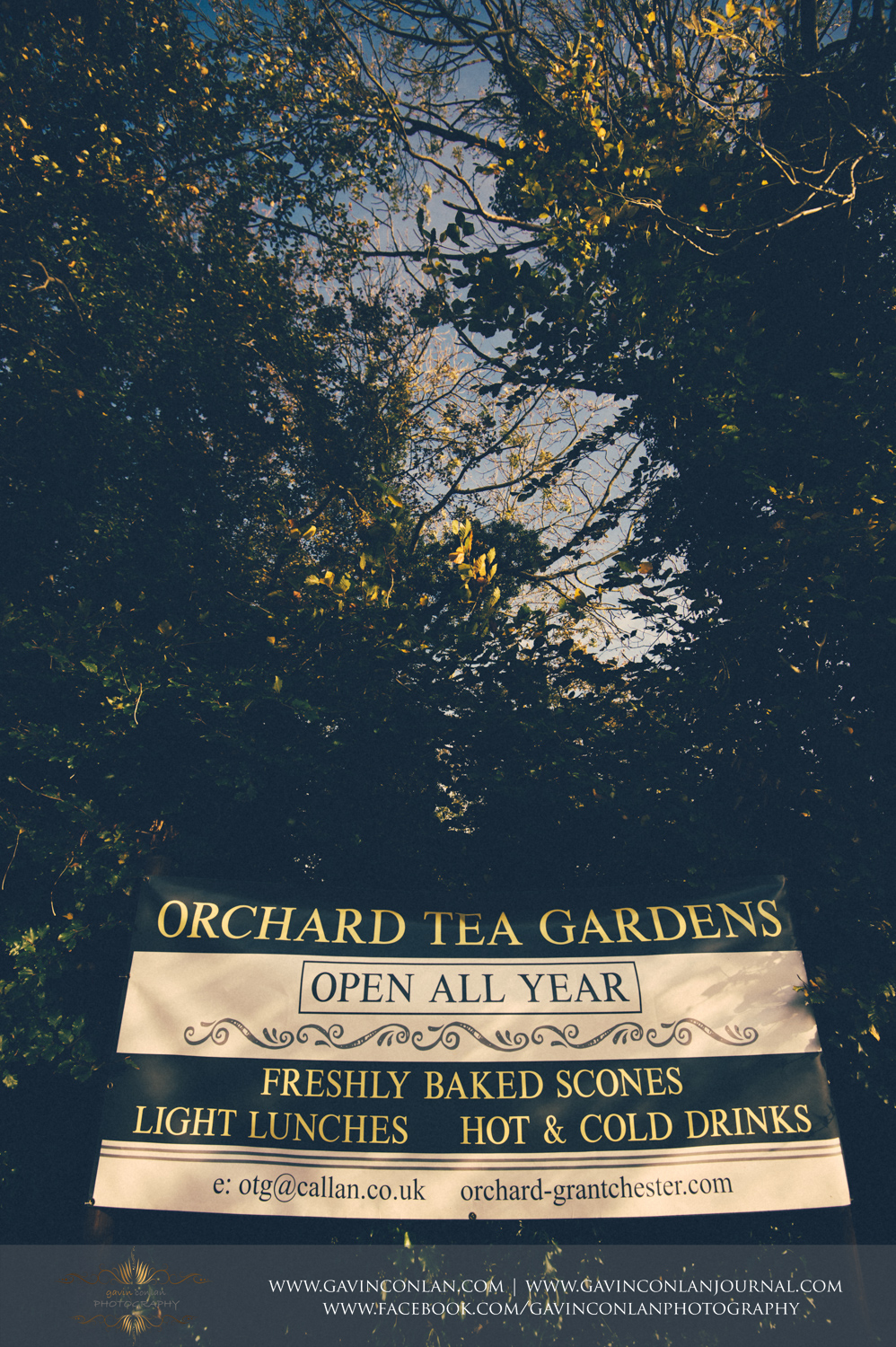 The Orchard tea rooms in Grantchester, Cambridgeshire