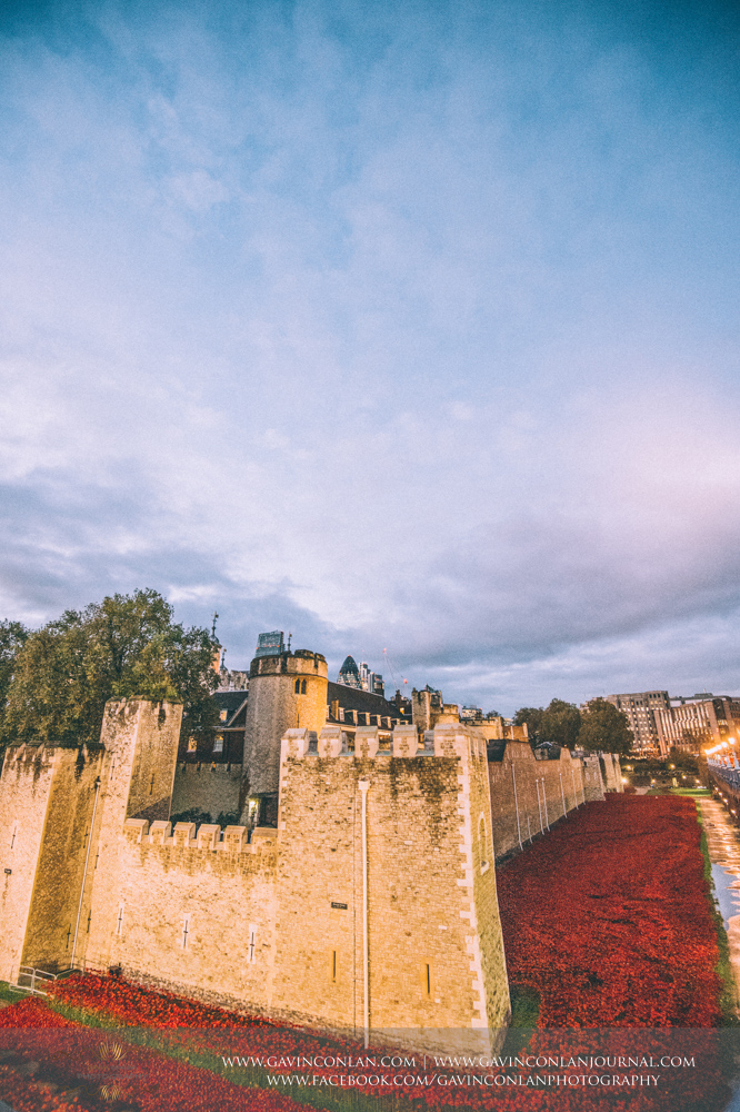 poppies at Tower of London, Blood Swept Lands and Seas World War One tribute