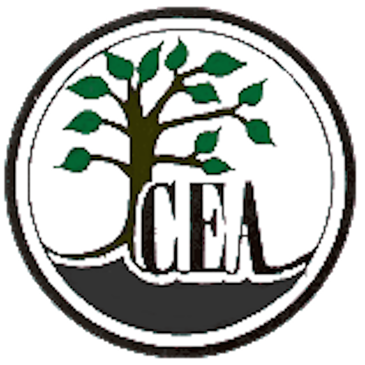 Audio - Christian Educators Association