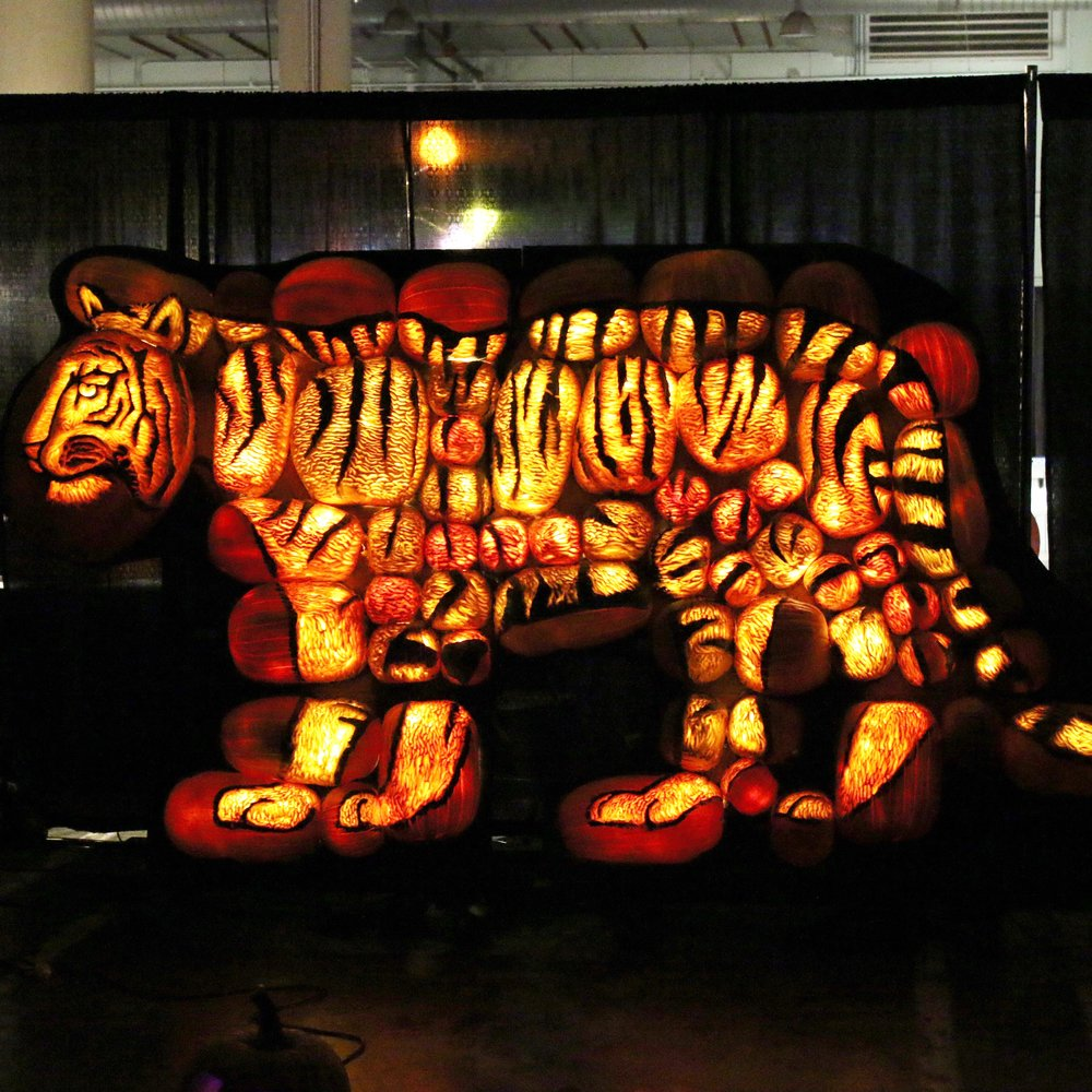rise-pumpkin-tiger