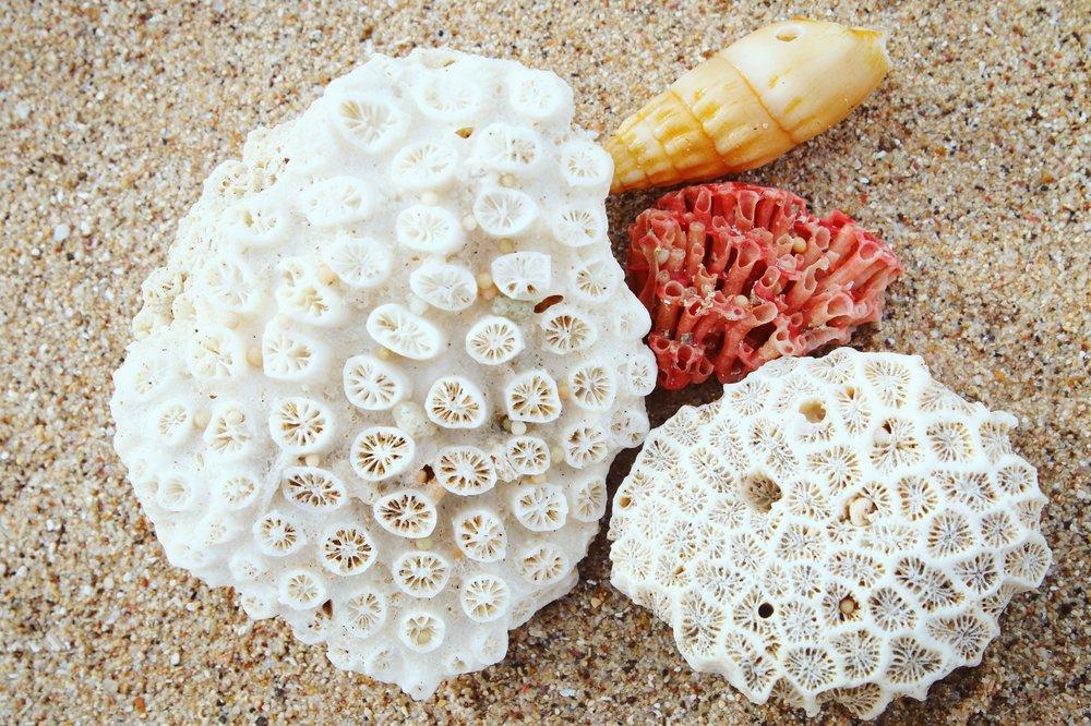 bali-beach-combing-3