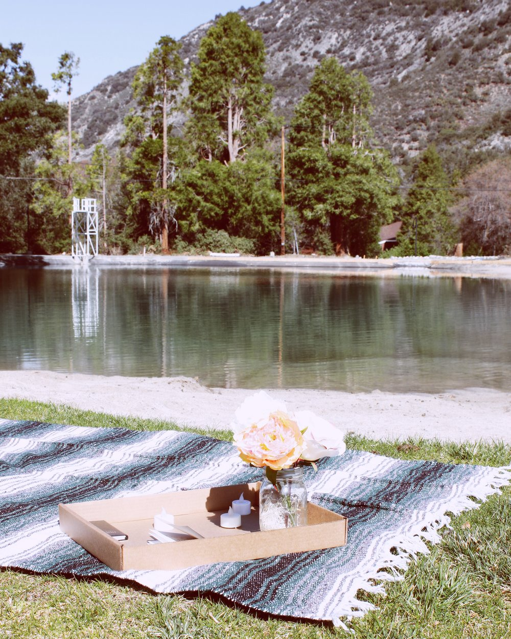 picnic-by-lake-forest-home