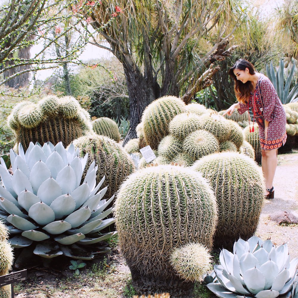 girlandtheword-desert-gardens-huntington-library-2