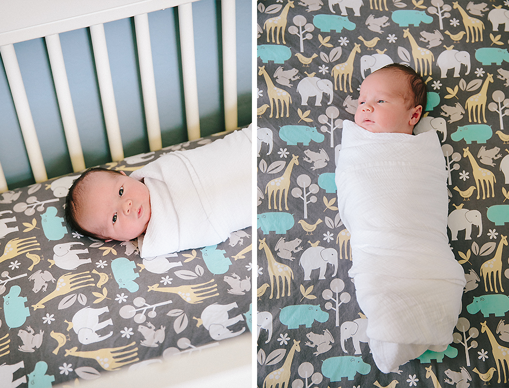 Denver Newborn Photographer 2