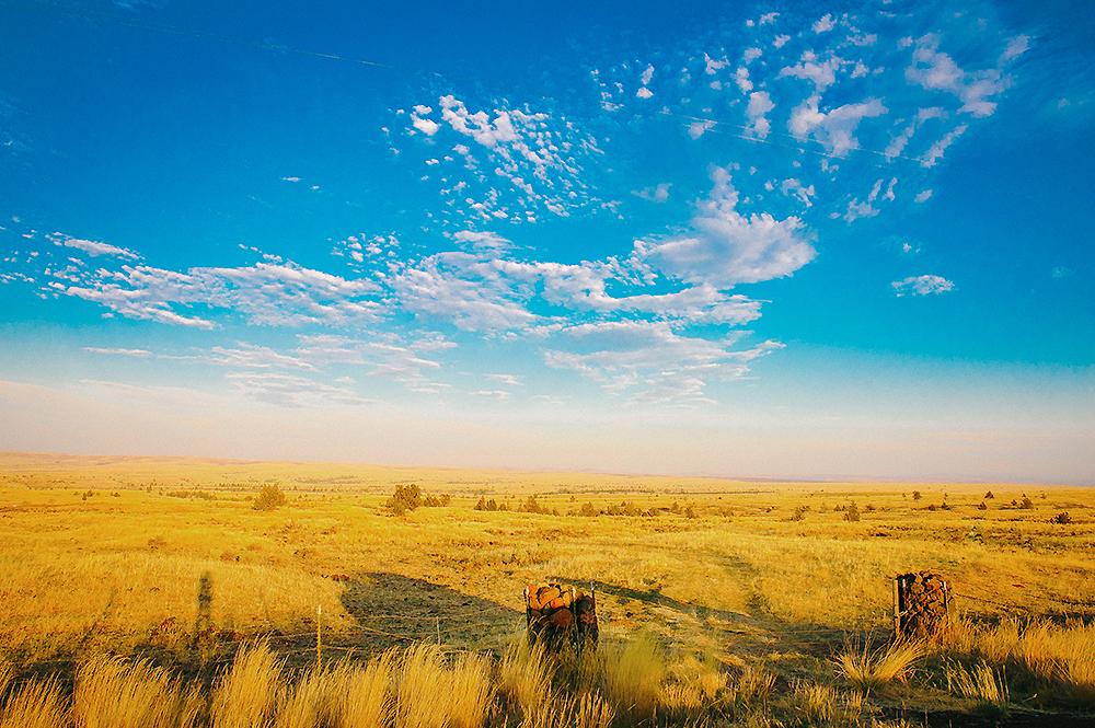 Oregon Road Trip Photographer 22
