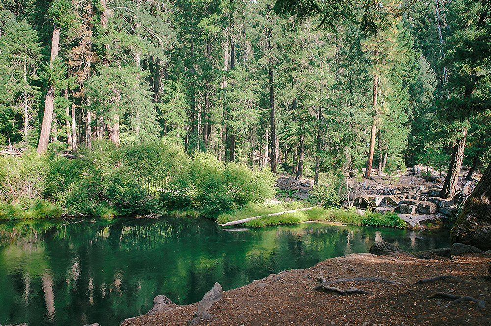 Oregon Road Trip Photographer 7
