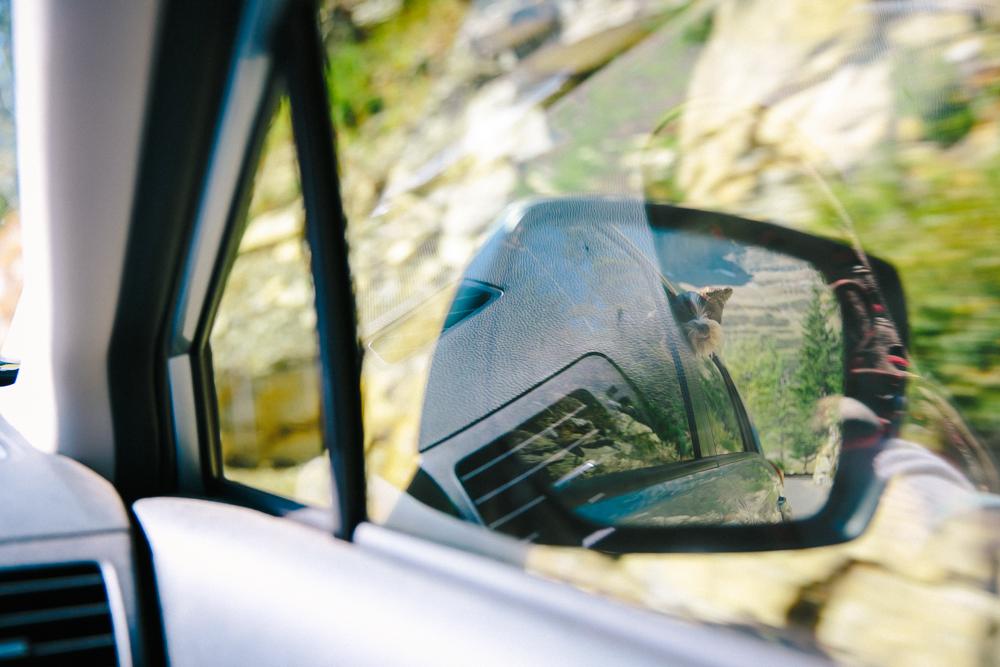 Montana Road Trip (20 of 127).jpg