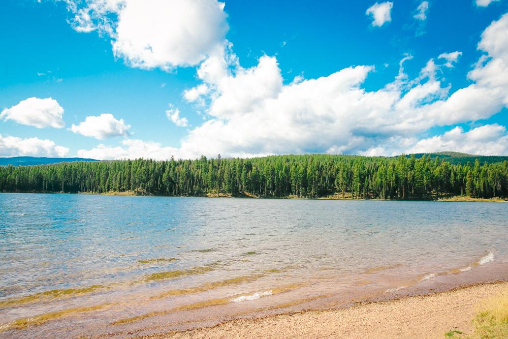 Montana Road Trip (88 of 127).jpg