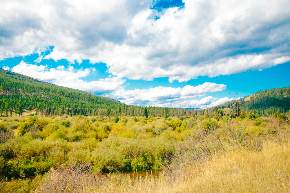 Montana Road Trip (97 of 127).jpg