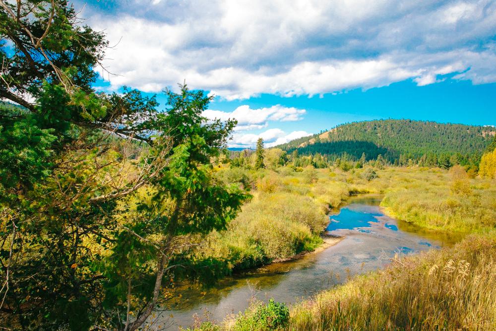Montana Road Trip (98 of 127).jpg
