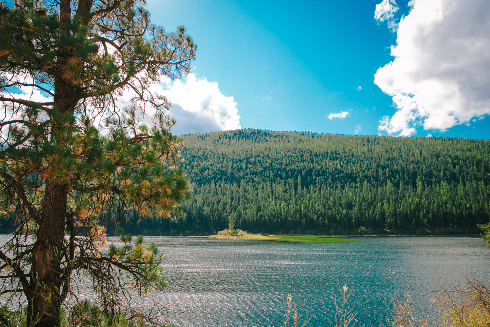 Montana Road Trip (99 of 127).jpg