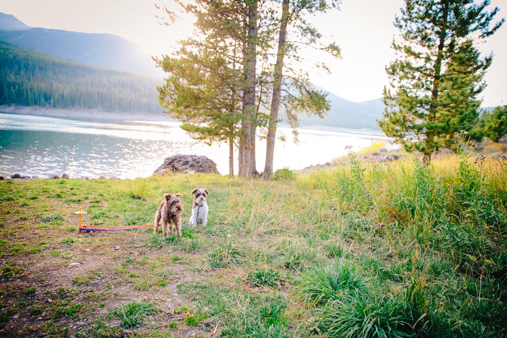 Montana Road Trip (109 of 127).jpg