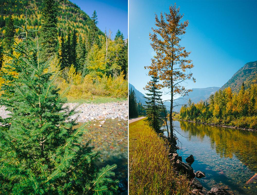 Montana Beauty 3.jpg