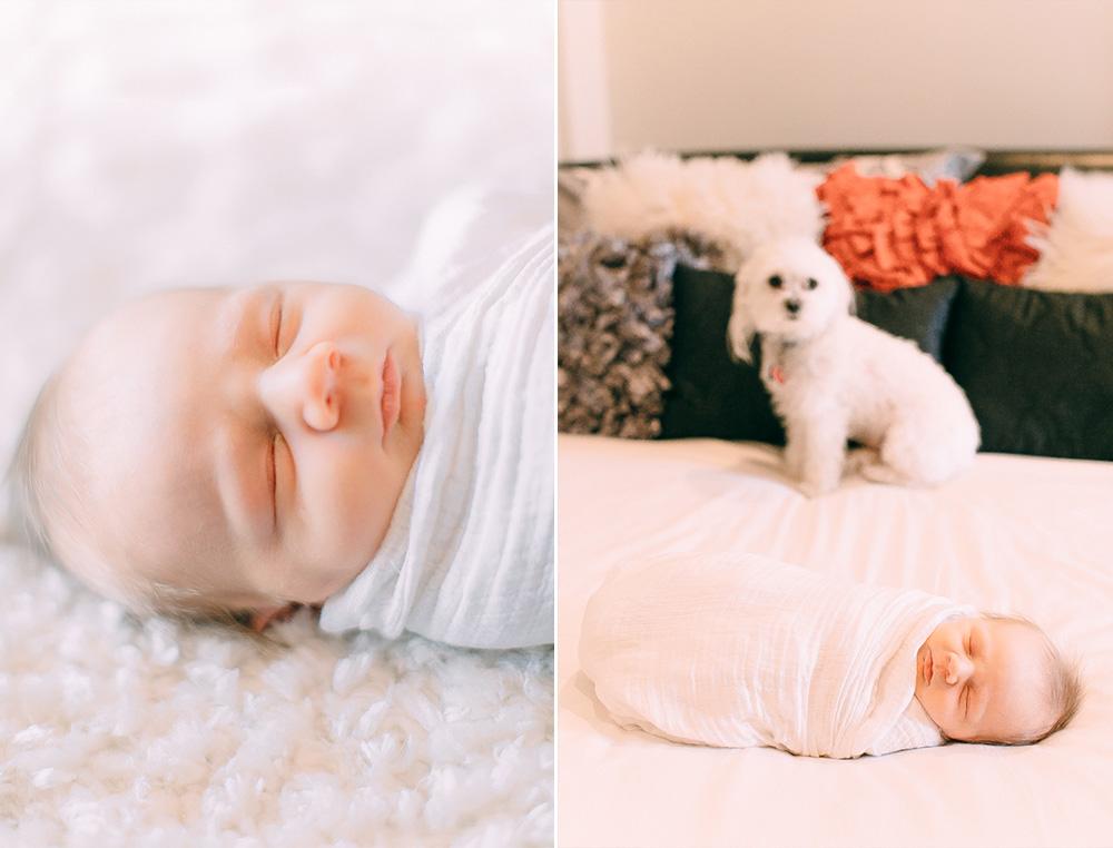 Newborn Photographer Louisville 8.jpg