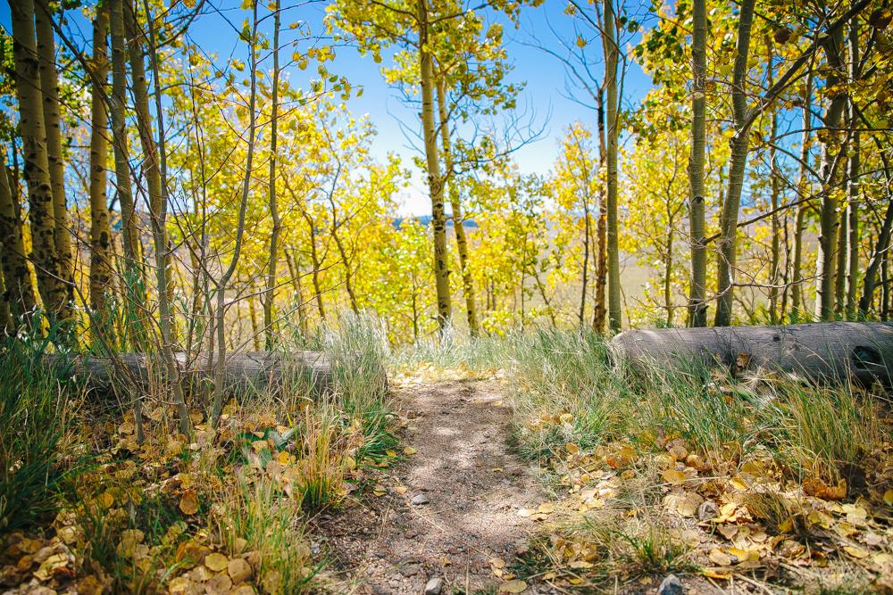 Colorado Road Trip0015.jpg