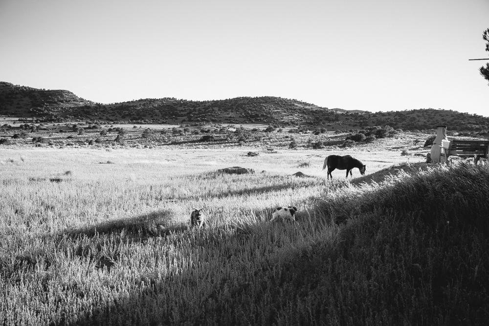 Colorado Road Trip0029.jpg