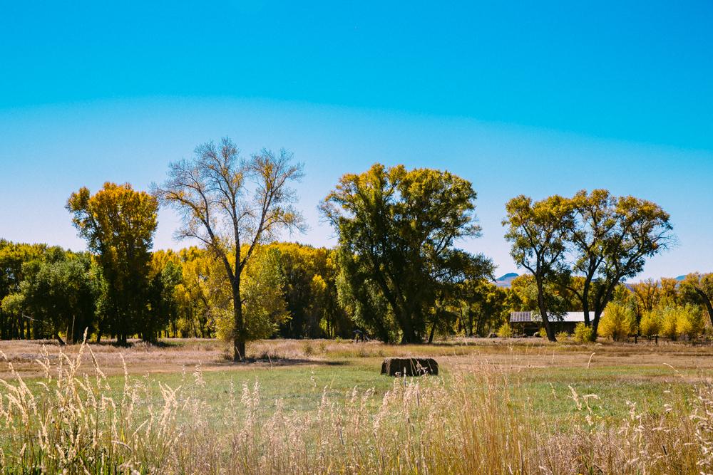 Colorado Road Trip0084.jpg