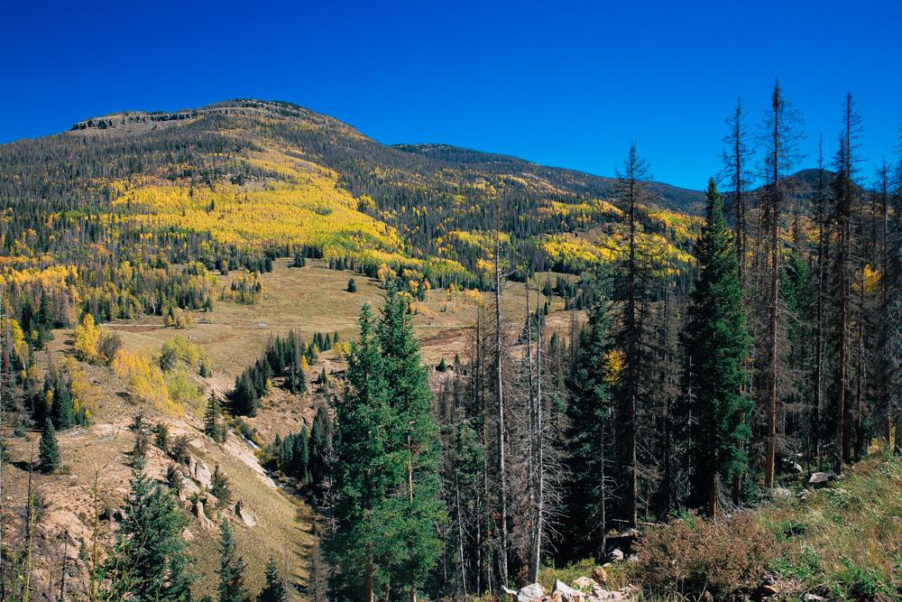 Colorado Road Trip0095.jpg