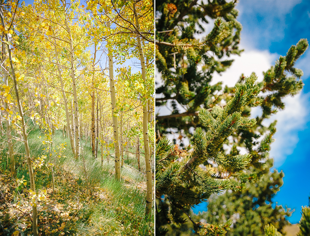 Colorado Road Trip 1.jpg