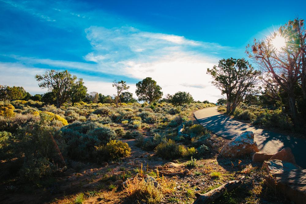 Colorado Road Trip0112.jpg