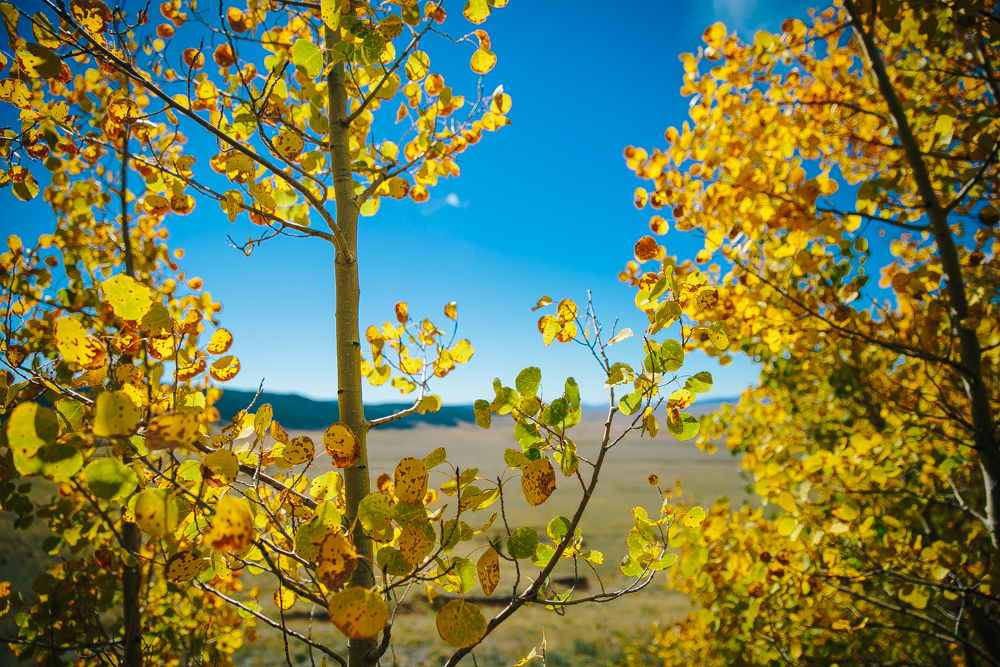 Colorado Road Trip0008.jpg