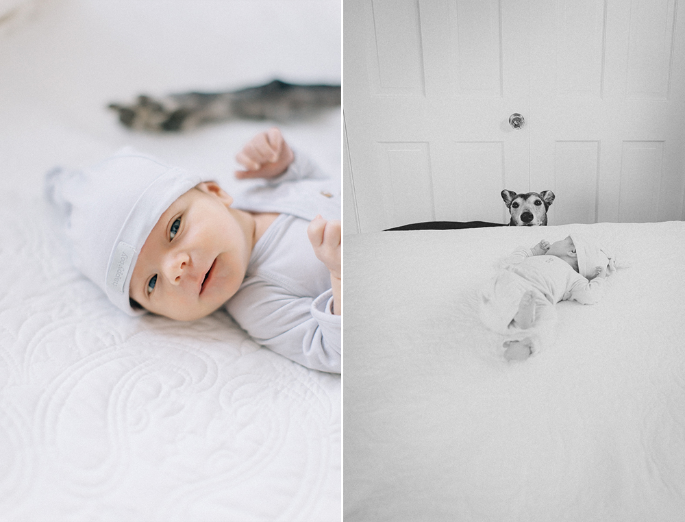Denver lifestyle newborn session 1 jpg