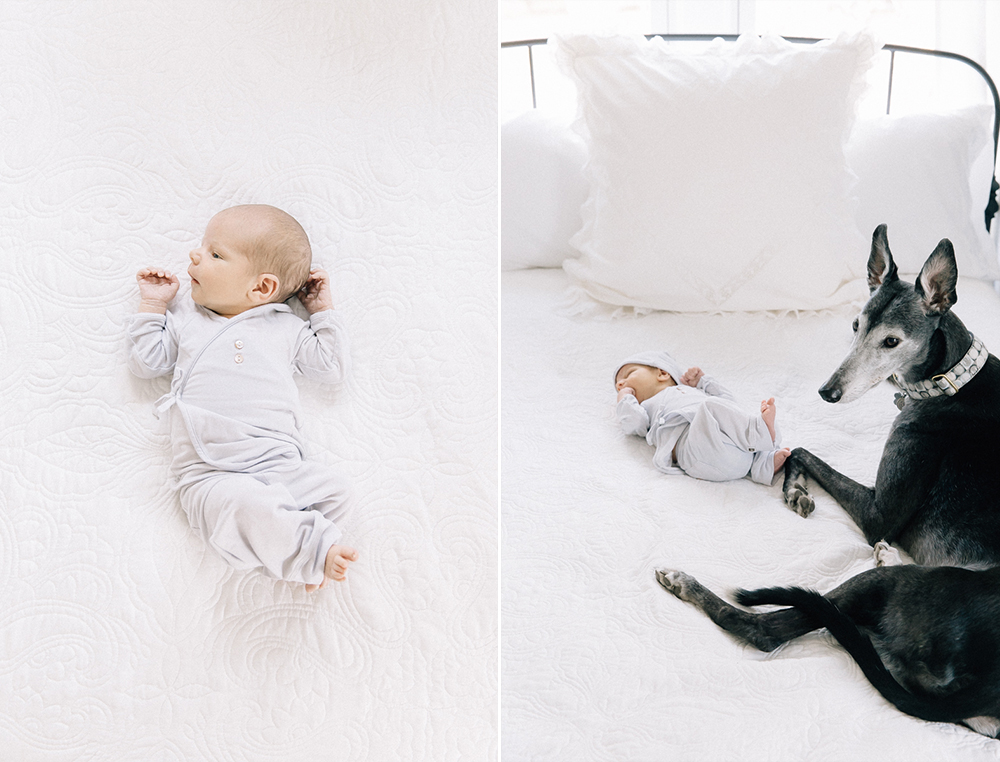 Denver Lifestyle Newborn Session.jpg