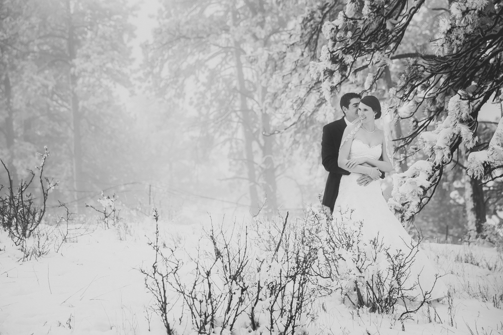 Denver Winter Wedding Photographer (32 of 42).jpg