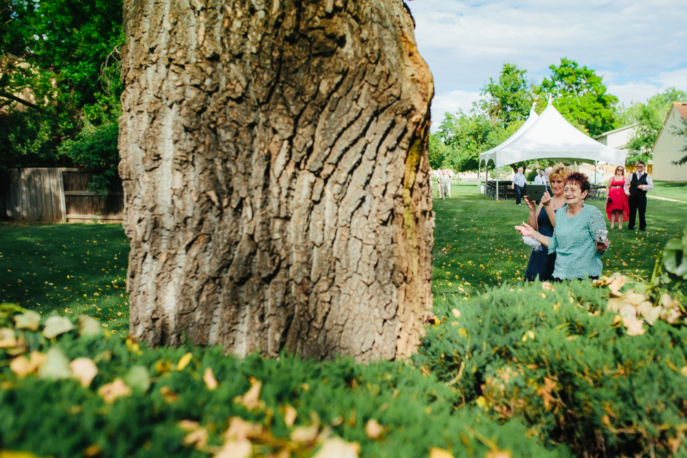 Denver Wedding Photographer 62.jpg