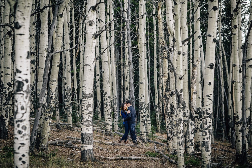Squaw Pass Fall Engagement Session -15.jpg