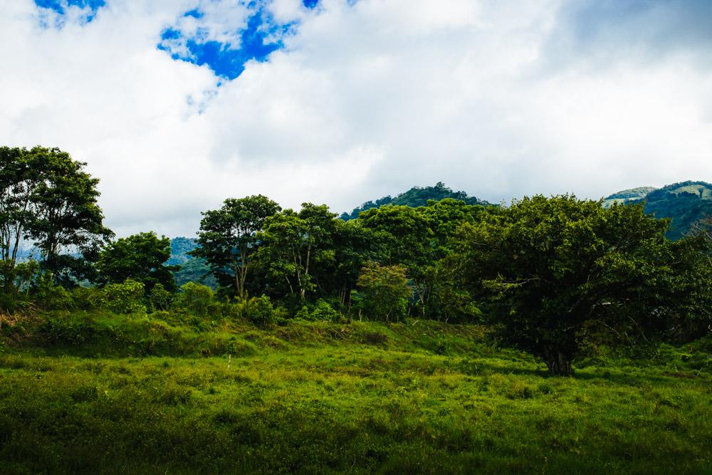 Costa Rica Travel Photographer -26.jpg