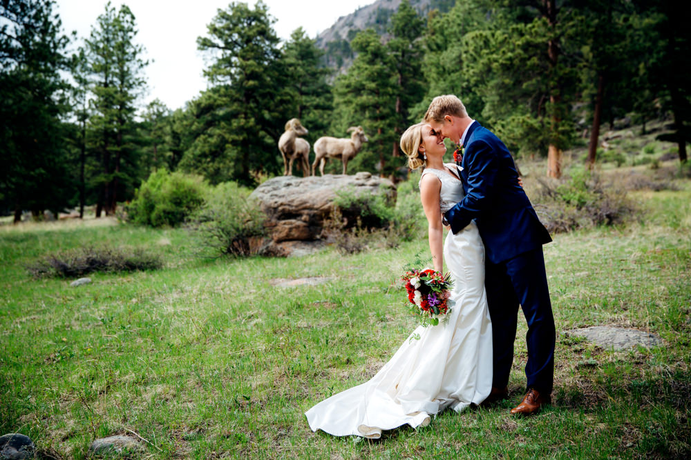 Della Terra Wedding -12.jpg