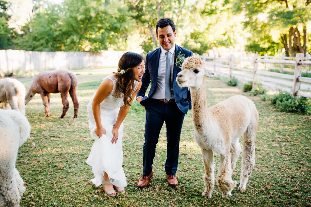 Lyons Farmette Wedding 17.jpg