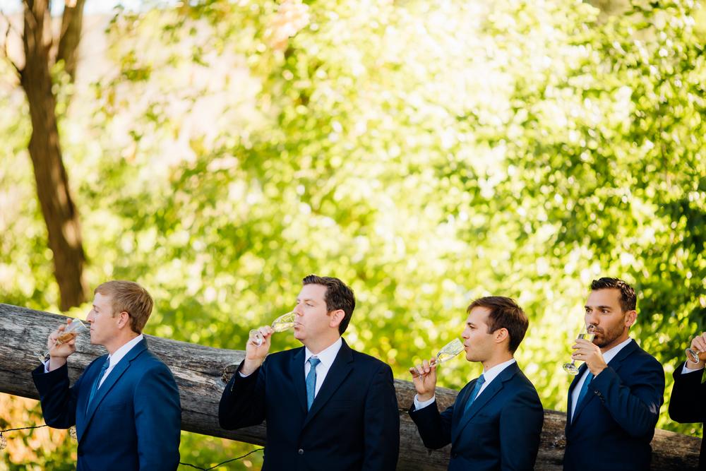 Lyons Farmette Wedding 27.jpg
